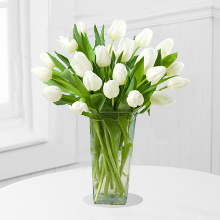 20 White Tulips In A Vase Shaheena Flowers